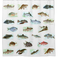 Vintage Fish Illustrations Shower Curtain