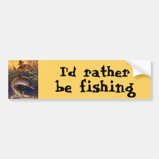 Vintage Fish, Sports Fishing Trout Catch n Release Bumper Sticker