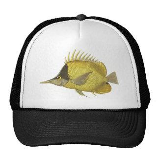 Vintage Fish, Yellow Tropical Chelmon Longirostris Trucker Hat