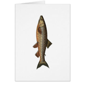 Vintage Fishing Fathers Day Card