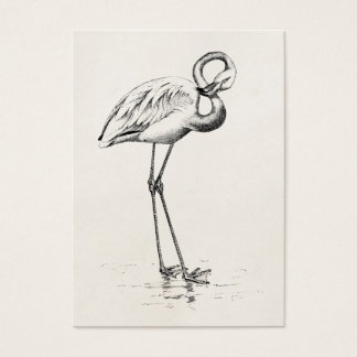 Flamingo business cards templates zazzle vintage flamingo bird antique bird template business card pronofoot35fo Images
