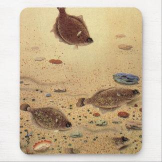Vintage Flat Fish Flounders, Marine Ocean Life Mouse Pad