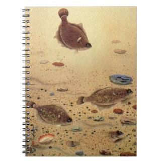 Vintage Flat Fish Flounders, Marine Ocean Life Notebook