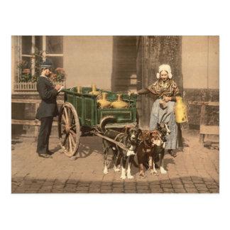 Vintage Flemish Milk Maid Postcard