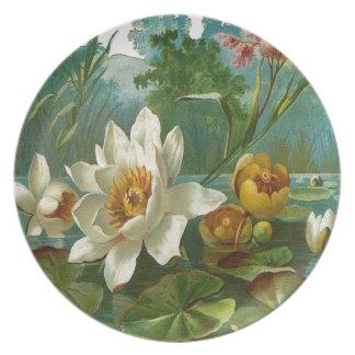 Vintage, flor acuática, cumpleaños de la esposa platos de comidas