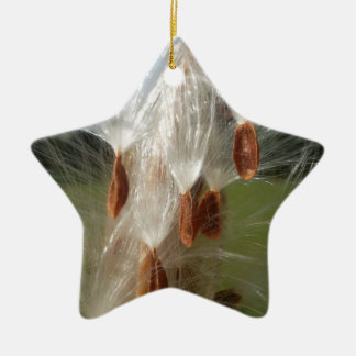 Vintage Flora and Fauna Milkweeds Floating.jpg Ceramic Ornament