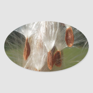 Vintage Flora and Fauna Milkweeds Floating.jpg Oval Sticker