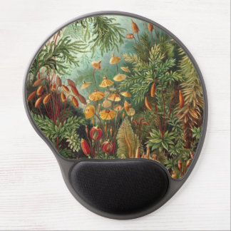 Vintage Flora Moss Plant Muscinae by Ernst Haeckel Gel Mouse Pad