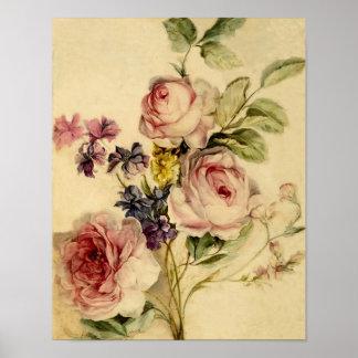 Vintage floral a partir de siglo XVIII Poster