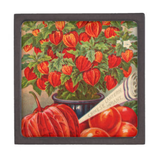 Vintage Floral and Fruit Seed Catalog Gifts Premium Trinket Boxes