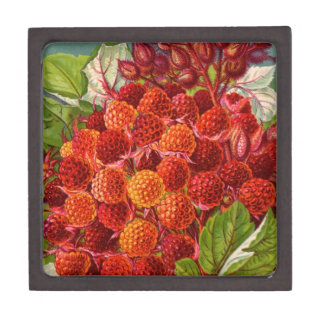 Vintage Floral and Fruit Seed Catalog Gifts Premium Gift Box