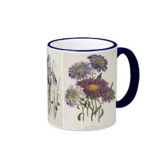 Vintage floral, asteres, iris y flores de la taza a dos colores