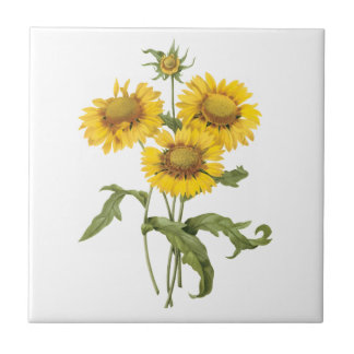Vintage Floral Blanket Flower Sunflower by Redoute Small Square Tile