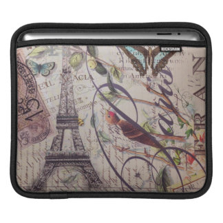 Vintage floral butterfly Paris eiffel tower iPad Sleeve