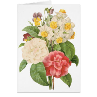 Vintage Floral Camelia Daffodil Flowers by Redoute Card