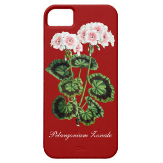 Vintage floral case iPhone 5 case