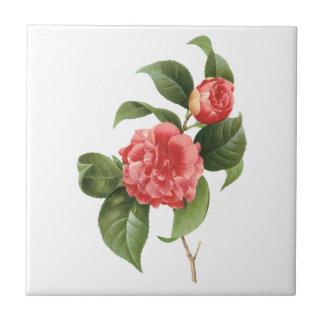 Vintage floral, flores rosadas de la camelia por azulejo cuadrado pequeño