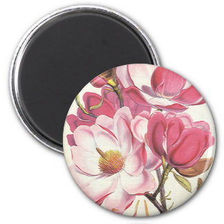 Vintage floral, flores rosadas florecientes de la  imanes