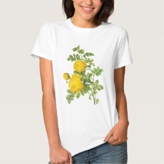 Vintage Floral Flowers, Yellow Roses by Redoute T Shirts