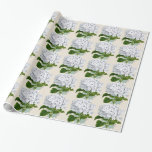 Vintage floral Hydrangea gift wrap wrapping paper