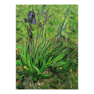 Vintage floral Iris by Vincent van Gogh 5.5x7.5 Paper Invitation Card
