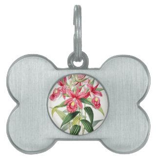 Vintage floral pet tag
