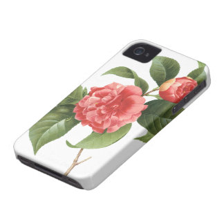 Vintage Floral, Pink Camellia Flowers by Redoute Case-Mate iPhone 4 Case