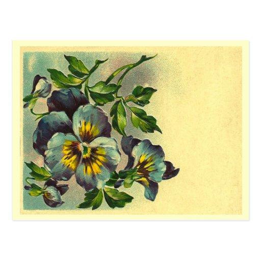 Vintage floral postal
