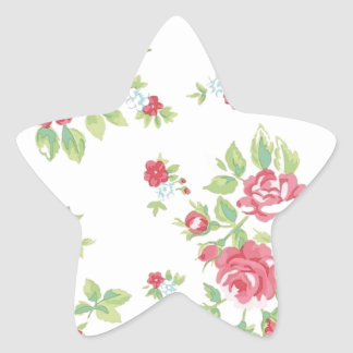 Vintage Floral Roses Pink Coral Green Red Peach Star Sticker