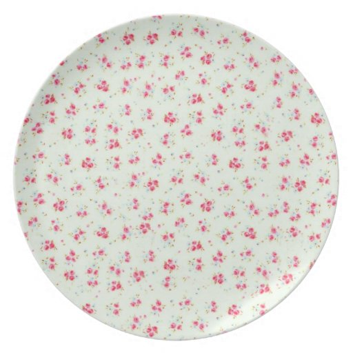 Vintage floral roses pink shabby chic rose flowers party plates