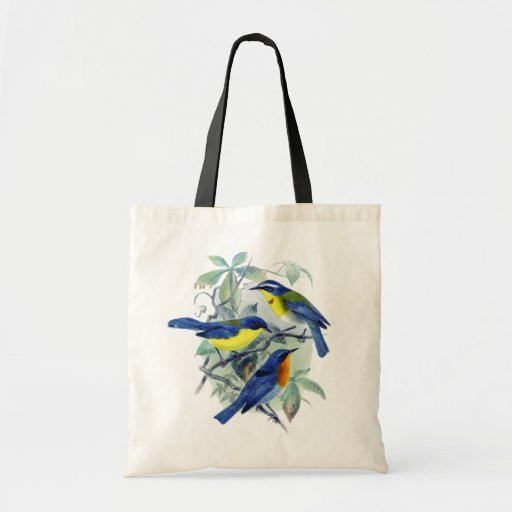 Vintage Floral Songbirds Apparel and Gifts Budget Tote Bag