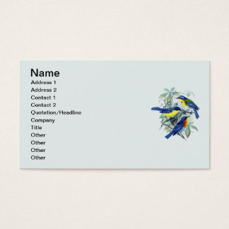 Vintage Floral Songbirds Apparel and Gifts Business Card