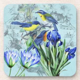 Vintage Floral Songbirds Apparel and Gifts Beverage Coaster