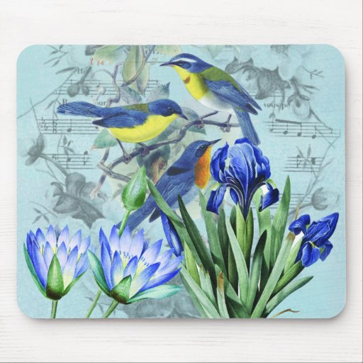 Vintage Floral Songbirds Apparel and Gifts Mousepads