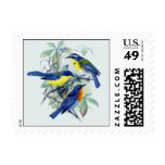 Vintage Floral Songbirds Apparel and Gifts Stamps