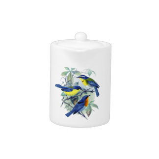 Vintage Floral Songbirds Apparel and Gifts Teapot