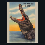"""Vintage Florida Alligator Post Card<br><div class=""""desc"""">Retro / Vintage Travel post card.  Large alligator looking up with a wide open mouth!  &quot;Drop in any time&quot; in FLORIDA!</div>"""