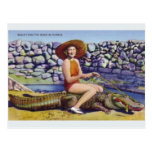 Vintage Florida Alligator Postcard