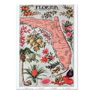Vintage Florida Map Card