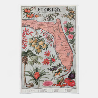 Vintage Florida Map Hand Towel