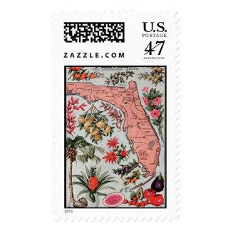 Vintage Florida Map Postage Stamp