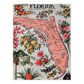 Vintage Florida Map Post Cards