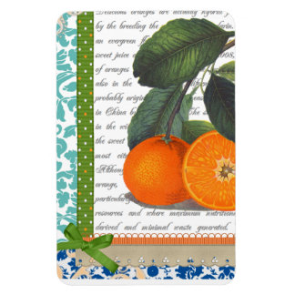 Vintage Florida Orange Fruit magnet