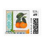 Vintage Florida Orange Fruit postage stamps