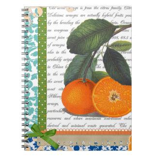 Vintage Florida Orange Fruit recipe notebook