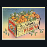 "Vintage Florida Oranges Postcard<br><div class=""desc"">Retro / Vintage Travel post card.  The Box of Oranges I Promised You From the Sunshine State,  Florida!  Greetings from Florida!</div>"