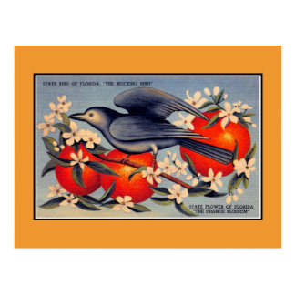 Vintage Florida State flower, state bird Postcard