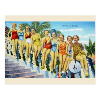 Vintage Florida Swimsuit Beauties Postcard