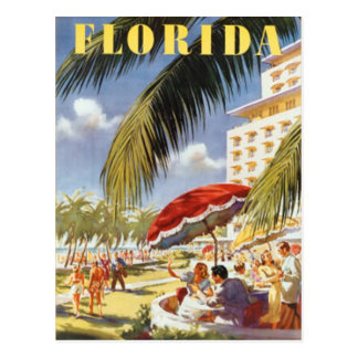 Vintage Florida, USA - Postcard