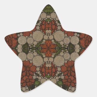 Vintage Flower Abstract Pattern Star Sticker